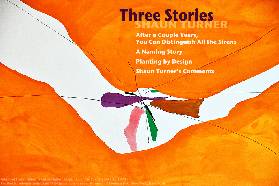 Artwork for Shaun Turner's stories